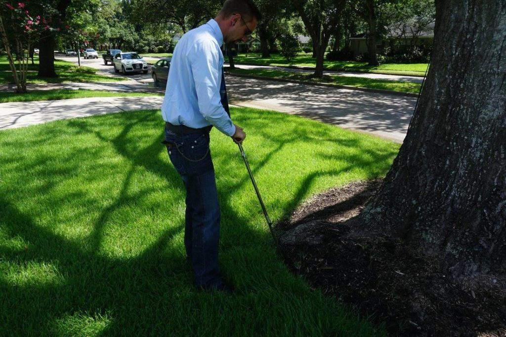 Arborist-Consultations-Henderson's Best Tree Care Services-We Offer Tree Trimming Services, Tree Removal, Tree Pruning, Tree Cutting, Residential and Commercial Tree Trimming Services, Storm Damage, Emergency Tree Removal, Land Clearing, Tree Companies, Tree Care Service, Stump Grinding, and we're the Best Tree Trimming Company Near You Guaranteed!