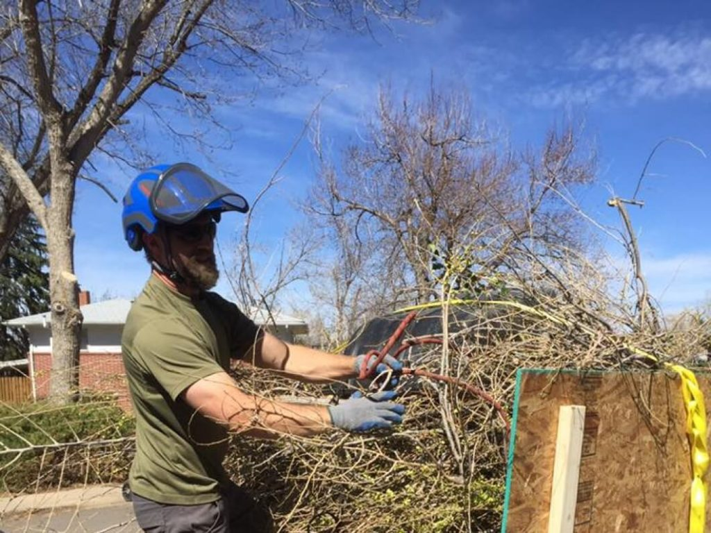 Services-Henderson's Best Tree Care Services-We Offer Tree Trimming Services, Tree Removal, Tree Pruning, Tree Cutting, Residential and Commercial Tree Trimming Services, Storm Damage, Emergency Tree Removal, Land Clearing, Tree Companies, Tree Care Service, Stump Grinding, and we're the Best Tree Trimming Company Near You Guaranteed!