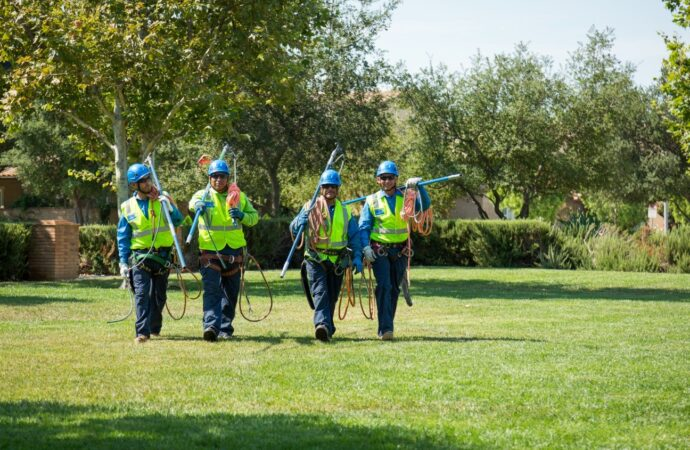 Silverado Ranch-Henderson's Best Tree Care Services-We Offer Tree Trimming Services, Tree Removal, Tree Pruning, Tree Cutting, Residential and Commercial Tree Trimming Services, Storm Damage, Emergency Tree Removal, Land Clearing, Tree Companies, Tree Care Service, Stump Grinding, and we're the Best Tree Trimming Company Near You Guaranteed!